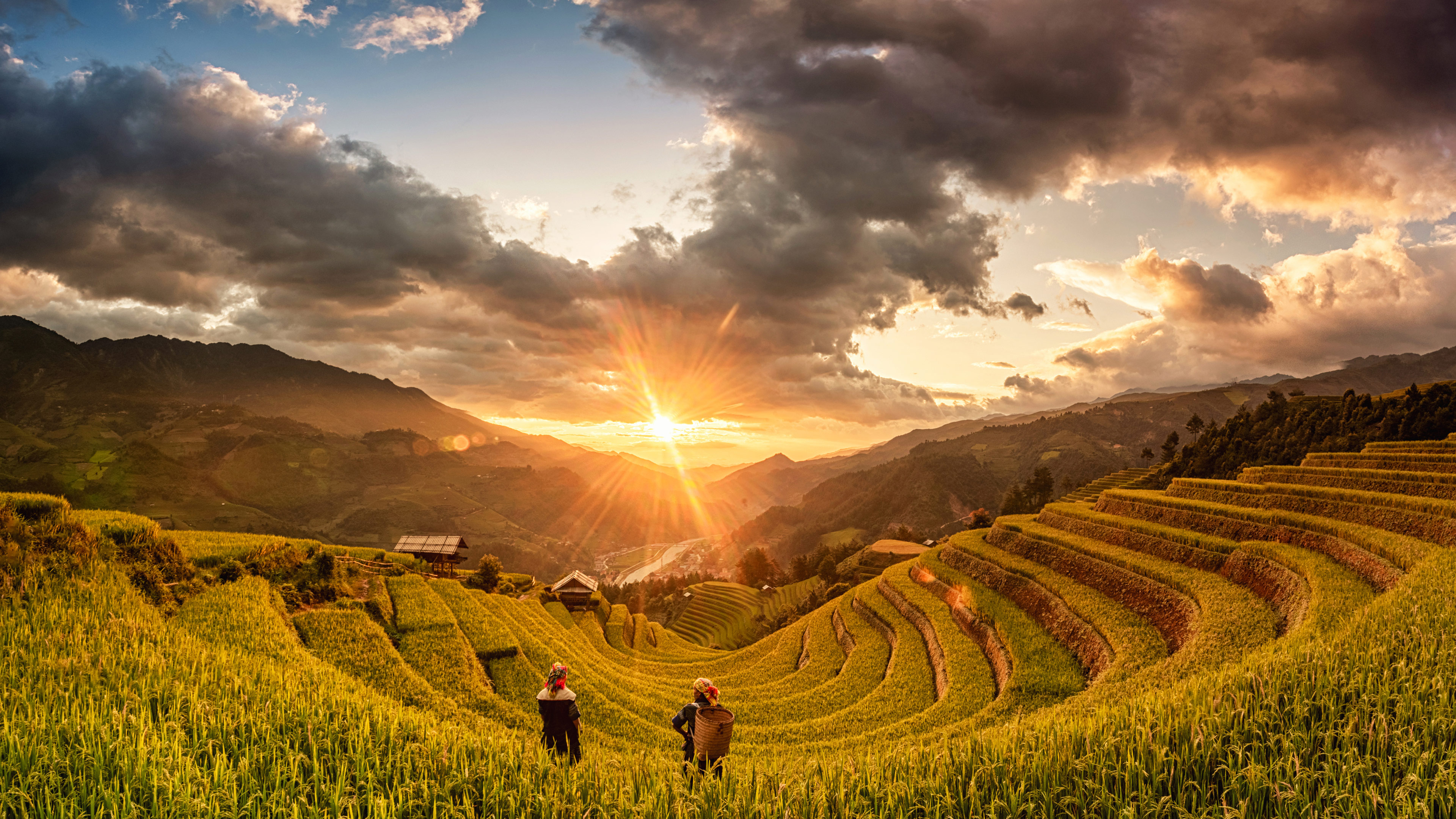 COVID-19 : L'OMT propose un dispositif d'assistance technique pour le redressement du tourisme
