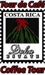 Doka Estate Coffee Tours