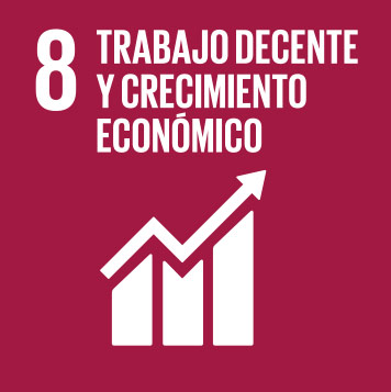 8. Decent work and economic growth