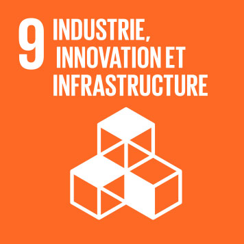 9.Industry, innovation and infrastructure