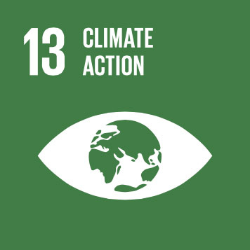 13.Climate action