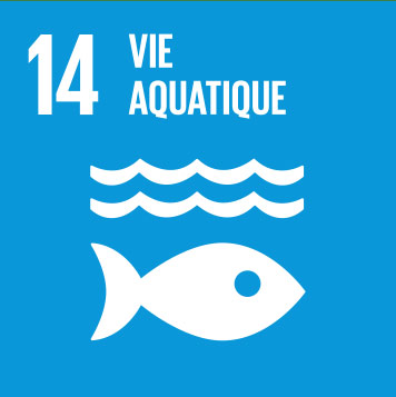 14. Life below water