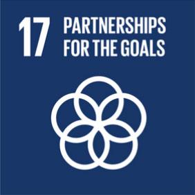 SDG17