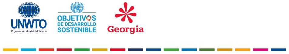 Consejo ejecutivo Georgia 2020