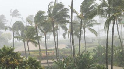 Guía para inversiones adaptadas al cambio climático