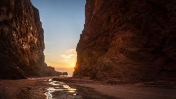 """منظمة السياحة العالمية ونيوم تطلقان تحدي """"تجارب السياحة في المستقبل"""""""