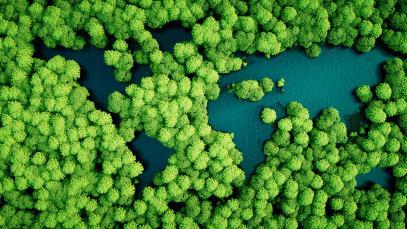 Transformar el turismo para la acción por el clima: hoja de ruta hacia un «escenario de alta ambición»