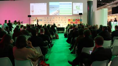 ffiliate Members Corner: Leading the Decade of Public Private Partnership for Sustainable Tourism