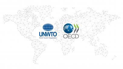 Оказание поддержки и помощи в координации в интересах безопасного и устойчивого восстановления туризма