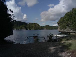 1st PALAWAN (Giant Swamp Taro) CULINARY FEST 2021