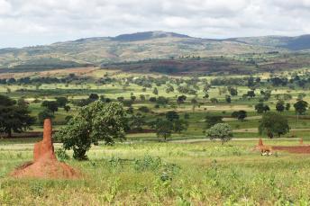 TOURISM FOR INCLUSIVE GROWTH -ETHIOPIA NATIONAL CELEBRATION, SIDAMA.