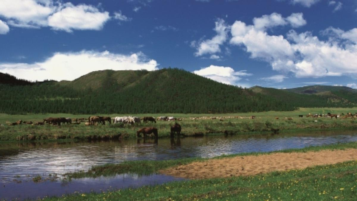 Marketing Mongolia for Tourism: UNWTO Workshop Gives Advice