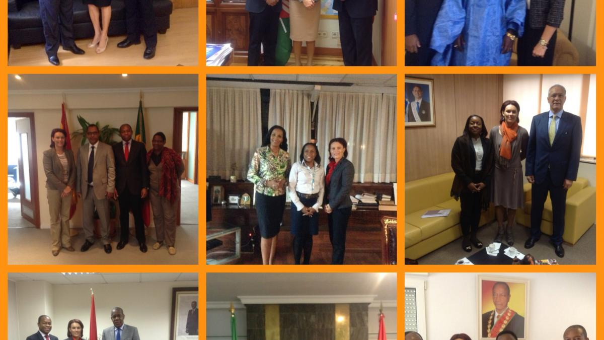 Courtesy visits to African Embassies in Spain