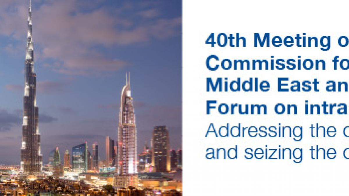 40th Meeting of UNWTO Commission for the Middle East