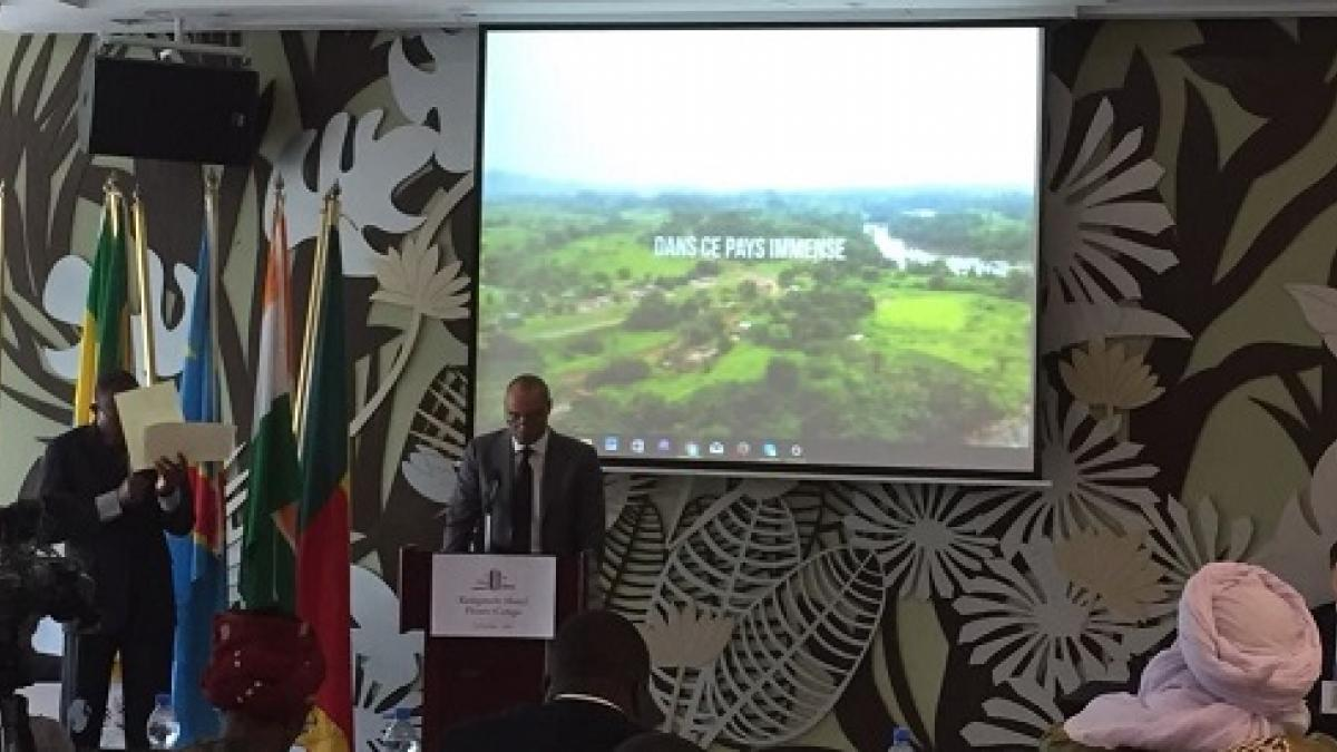 African tourism administrations undersign the Declaration of Kinshasa